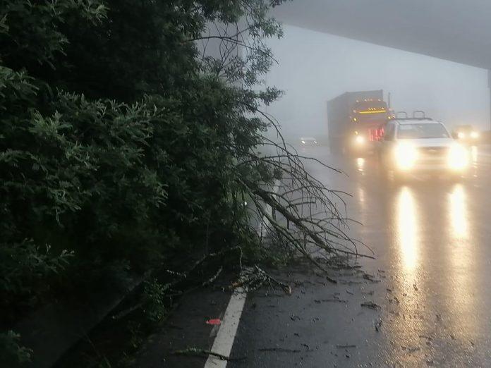 CLIMA. Las lluvias han provocado 51 movimientos de tierra.