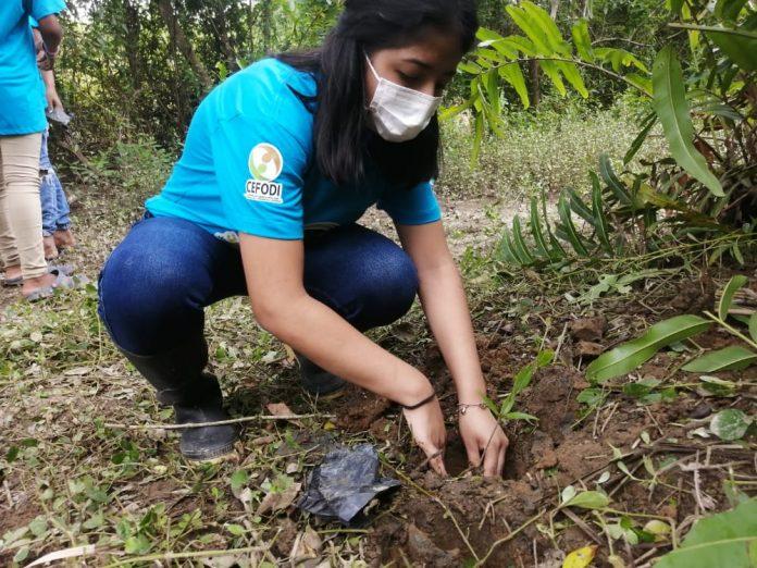 PROTECCIÓN. Las cuencas hídricas de Sálima fueron reforestadas, en el marco del Día Mundial de la Tierra.