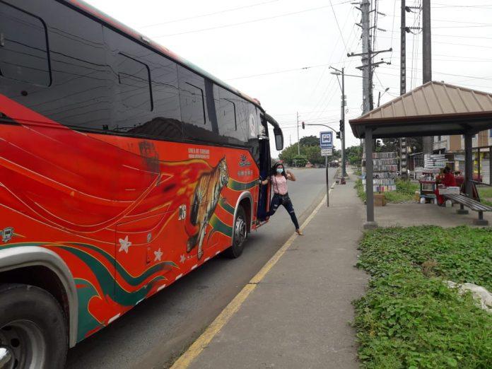 buses citam