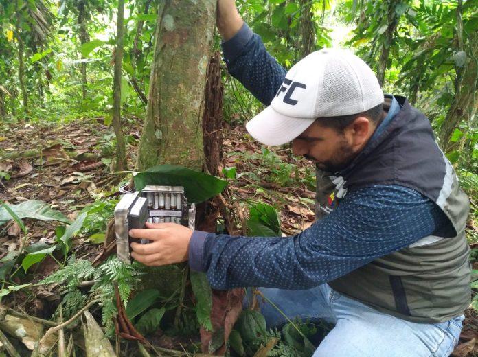 JORNADA.El técnico Edwin Correa revisando una de las cámaras colocadas.