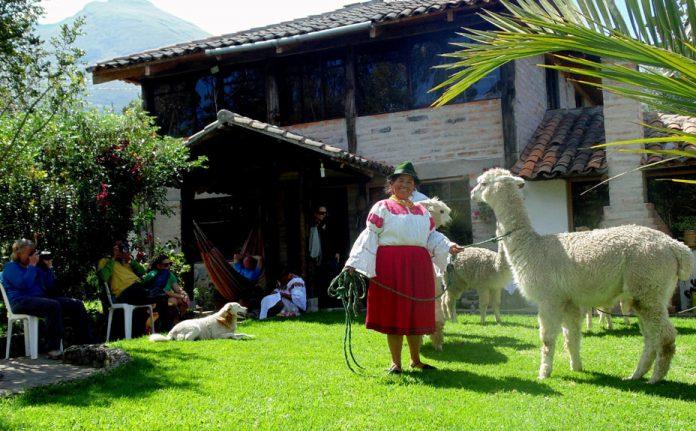 Experiencia. Los comuneros reciben a los turistas en casas campestres, de hasta ocho personas. (Fotos: San Clemente Tours)