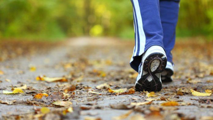 La actividad es para toda la familia y será un recorrido de tres kilómetros aproximadamente.
